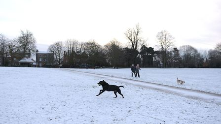 A dusting of snow landed in Ipswich in January 2019, turning Christchurch Park into a winter wonderl