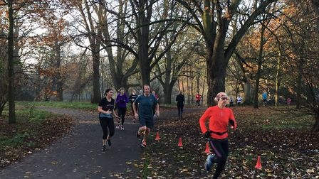 Runners approach the finish to last Saturday's Gunnersbury parkrun, through the trees. Picture: CARL