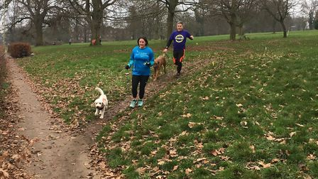 Dogs are a common sight at the Gadebridge parkrun, leading their owners around a 5K course. It's als