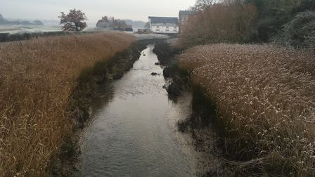 Roman River from Fingringhoe Bridge � flowing towards Fingringhoe Mill and on towards the Colne Pic