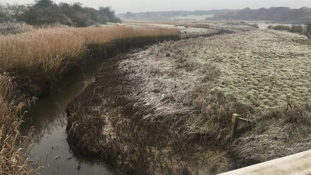 Roman River has flowed past Donyland Wood and the waters will soon pass beneath Fingringhoe Bridge a