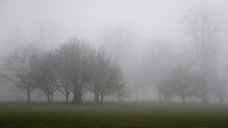 Dense fog is predicted to gather across the region overnight Picture: SARAH LUCY BROWN