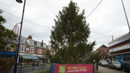 Will you pick Felixstowe's Christmas tree as your favourite of 2019? Picture: SARAH LUCY BROWN