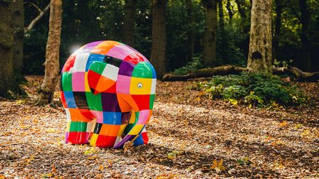 Elmer's Big Heart of Kent Parade will take place in summer 2020. Picture: JACK SPICER ADAMS PHOTOGRA