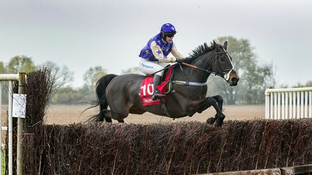 Ravished will be racing at Cottenham on Sunday. Picture: GRAHAM BISHOP PHOTOGRAPHY