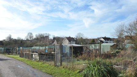 Weird Suffolk: Are the remains of St Andrew's church buried under these allotments? Picture: SARAH