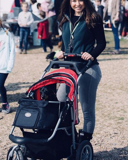 Percy attends the Southwold Sausage Walks in a pushchair owing to his IVDD Picture: SOUTHWOLD SAUSAG