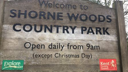 Shorne Woods Country Park, the home of the Shorne Woods parkrun in Kent. Picture: CARL MARSTON