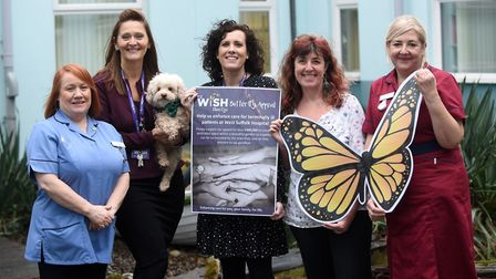 Launch of the MyWiSH Butterfly Appeal. Palliative care nurses Marie Rees, Liz Eagles and Sam Hobson