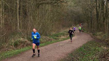 Runners on track at the 10th Salcey Forest parkrun, which attracted a bumper field of 370. Picture: