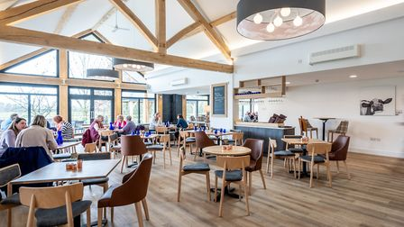 Fynn Valley Cafe Terrace Picture: Adrydog Photography
