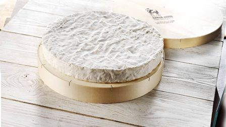 Baron Bigod Brie made by Fen Farm Dairy of Bungay Picture: KAT MAGER PHOTOGRAPHY