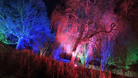 The Spectacle of Light at Haughley Park will not be open on Saturday night because of fears trees wi