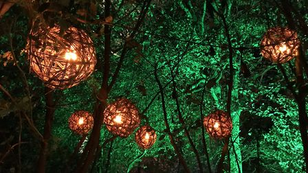 Get lost in the wonder of the woods at the Spectacle of Light which runs at Haughley Park from Febru