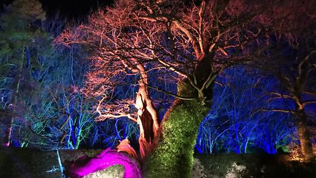 The Spectacle of Light at Haughley Park has been cancelled this weekend Picture: Neil Didsbury