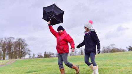 Some parks may be closed in the high Storm Ciara winds on Sunday (file photo) Picture: SARAH LUCY BR