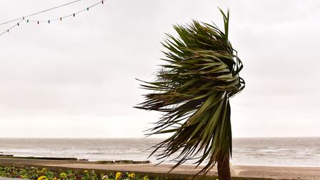 People are advised to stay away from exposed coastlines (file photo) Picture: SARAH LUCY BROWN