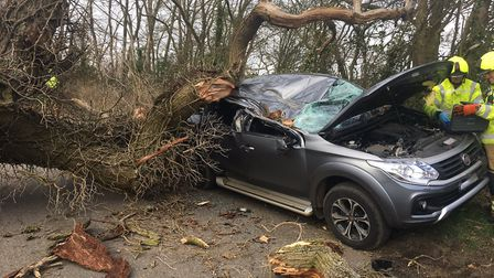The car was destroyed by a tree near Bury St Edmunds Picture: SUFFOLK CONSTABULARY
