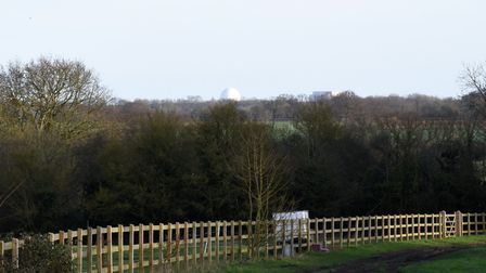 Sizewell in the distance from Fordley Hall Farm Picture: CHARLOTTE BOND