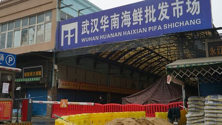 The Wuhan Huanan Wholesale Seafood Market which is believed to be the source of the new virus. Pictu
