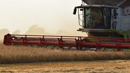 The UK government is set to sweep away the Common Agricultural Policy in favour of a new approach P