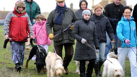 Dog walkers are being to explore the countryside around Melton as part of Honey + Harvey's Brunch a
