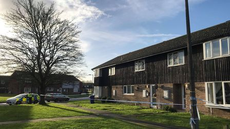An area around Brickfields Avenue in Newmarket is cordoned off and a murder inquiry launched after a