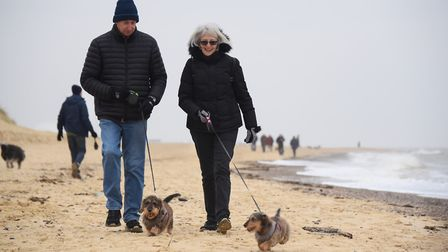 Millie, four, right, and Albert, three, ready for the Southwold Sausage Dog Walk with owners Mark an