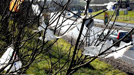 A motorist has been fined after a passenger was seen throwing litter out of a car window on the A12.