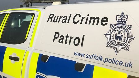 The horse has its tail cut in Little Bealings near Woodbridge. Picture: SUFFOLK POLICE