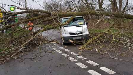 A van was hit by a fallen tree in Weeting on the B1112. Picture: PAUL BARBER