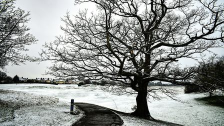 Areas of Suffolk have reported seeing snow this morning Picture: CARL HARLOTT