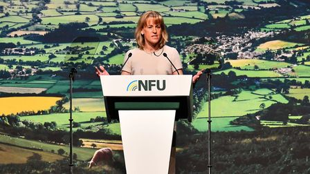 NFU president Minette Batters expressed relief that red diesel duty was left alone in the Budget Pi