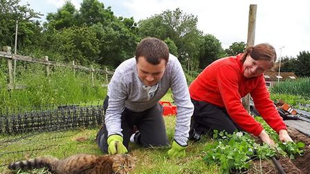 There's always plenty of do - and plenty of animals to care for - at Poppies Care Farm