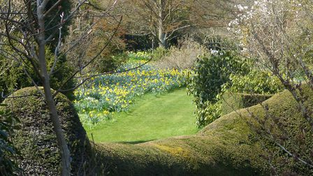 There's much to enjoy at the Place for Plants during the spring Picture: Sara Eley