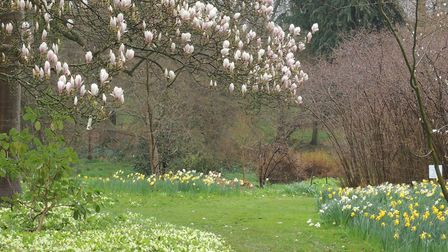 The Place for Plants, at East Bergholt, is a 20-acre garden originally laid out at turn of last cent