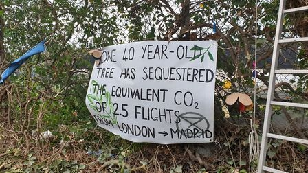 Extinction Rebellion say the trees don't need to be axed for the pathway Picture: ARCHANT