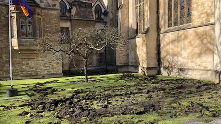 Trinity College lawn in Cambridge after Extinction Rebellion activists dug it up Picture: TIM NORMA