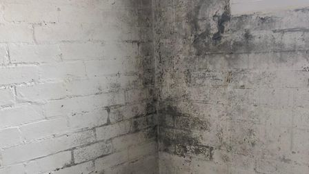 The mould in the brick extension in the property Picture: DEBBIE SMITH