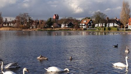 Thorpeness Meare is known for its swans Picture: Pamela Bidwell