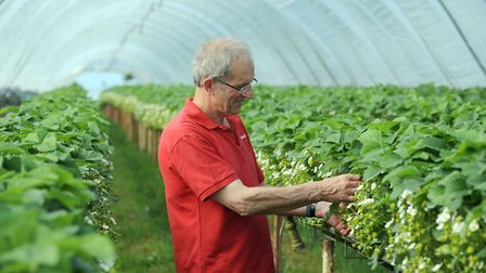 Andrew Sturgeon working on the farm Picture: PHIL MORLEY