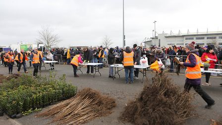 10,000 trees were given away by Colchester Borough Council last weekend Picture: COLCHESTER BOROUGH