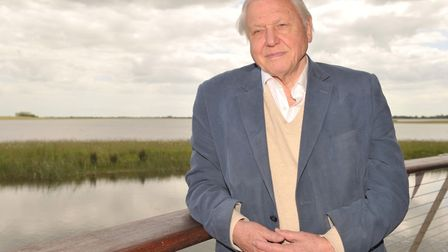 Sir David Attenborough : could the BBC afford to fund his documentaries if the licence fee was remov
