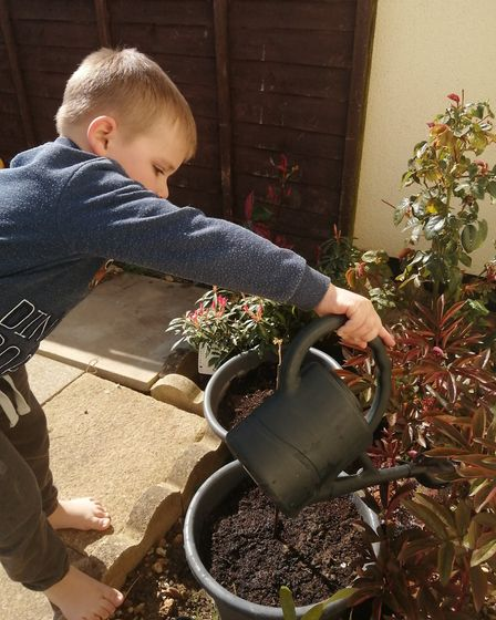 Planting seeds has been one of the activity Clare Skinner's children have been getting stuck in with