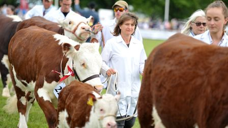 The Grand Parade on the final day of the Suffolk Show Picture: SARAH LUCY BROWN