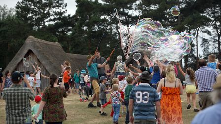 Dragon Fest at West Stow Anglo Saxon Village Picture: PHIL MORLEY