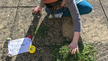 We are enjoying getting out in the garden as part of our homeschooling Picture: SUZANNE DAY