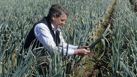 Andrew Williams, manager of Home Farm Nacton, looking at his leek crop, which has now been harvested