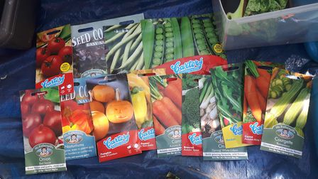 Have you started gardening more during lockdown? Picture: PAIGE GILES