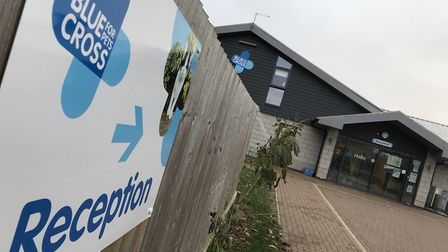 Blue Cross has temporarily closed all of its rehoming centres to new admissions during the lockdown